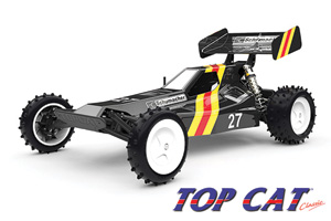 Nitro and Electric RC Model Cars